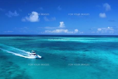 夏色の海の写真素材 [FYI00145816]