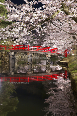 弘前城 桜ライトアップの素材 [FYI00145922]
