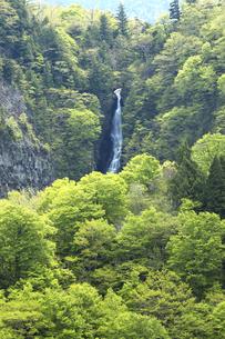 双竜峡 赤滝の素材 [FYI00146209]