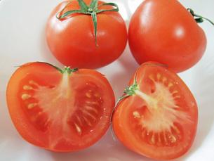 トマトの写真素材 [FYI00146642]