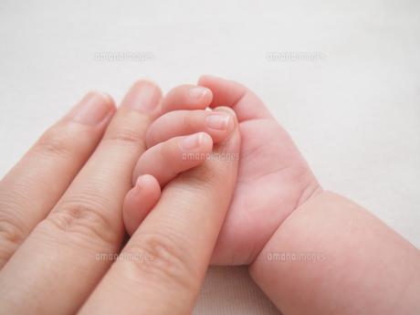 赤ちゃんの手の写真素材 [FYI00146651]