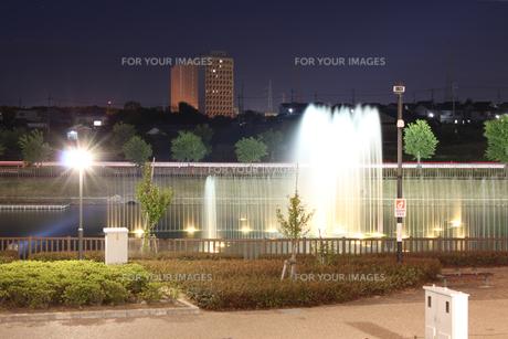 夜の噴水の写真素材 [FYI00146692]