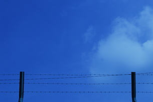Barbed wire and a blue skyの写真素材 [FYI00146711]