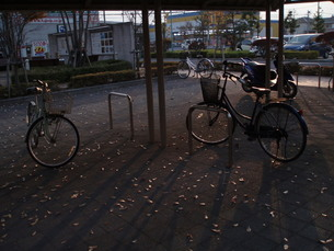 Bicycleの写真素材 [FYI00146739]