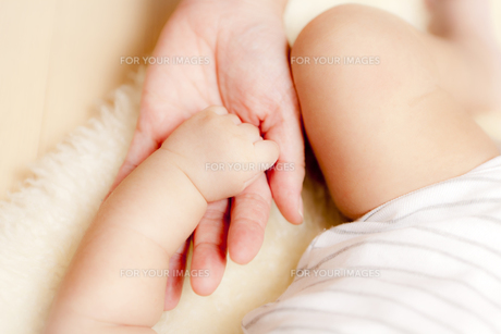 ママと赤ちゃんの手の素材 [FYI00146889]
