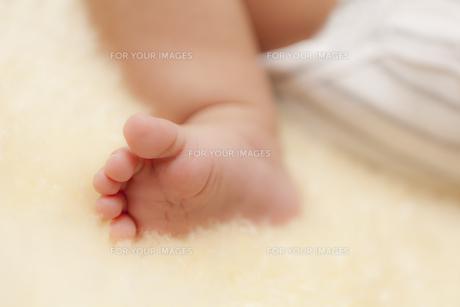 赤ちゃんの足の写真素材 [FYI00146907]