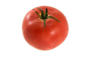 水滴のついたトマト1個の写真素材 [FYI00147085]