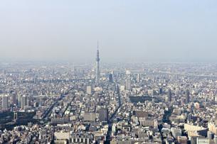 東京 空撮の写真素材 [FYI00147234]