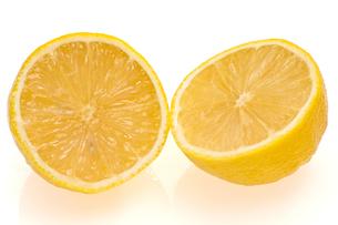レモンの写真素材 [FYI00147269]