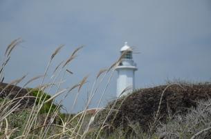 灯台の写真素材 [FYI00147331]