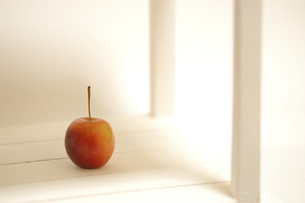 smal  appleの写真素材 [FYI00147365]