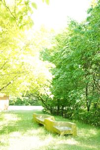 森の中山道でベンチに座って休憩の素材 [FYI00147509]