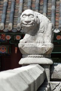 韓国の石像の写真素材 [FYI00147572]