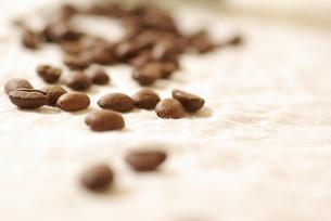 コーヒー豆の写真素材 [FYI00147591]