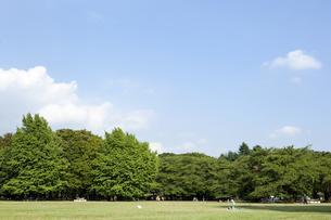 公園の写真素材 [FYI00147891]