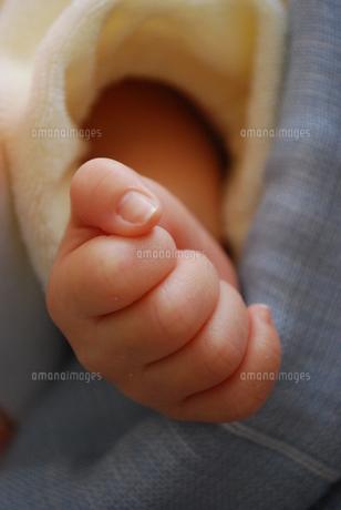 赤ちゃんの手の写真素材 [FYI00148115]