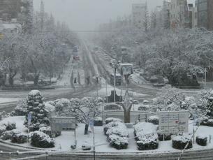 雪の国立の写真素材 [FYI00148208]