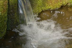 湧水の写真素材 [FYI00148385]