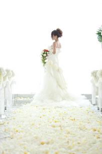 花嫁の写真素材 [FYI00148460]