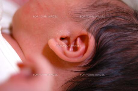 生まれたて赤ちゃんの耳の素材 [FYI00148755]