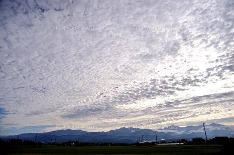 うろこ雲の写真素材 [FYI00149335]