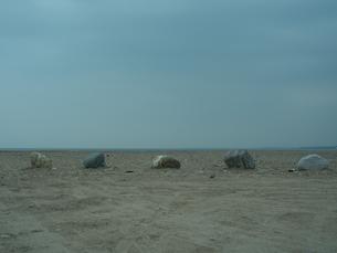 整列する石の写真素材 [FYI00149350]
