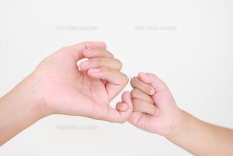 指きりの素材 [FYI00149423]