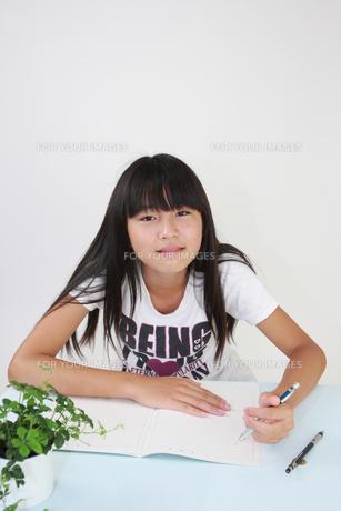 勉強する女の子の写真素材 [FYI00149432]