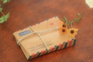 コレオプシスと小さな封筒の素材 [FYI00149613]