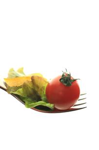 フォークの上のサラダの素材 [FYI00149615]