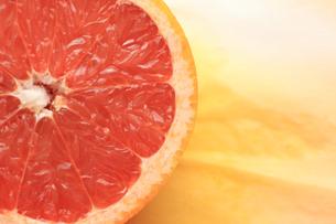 ピンクグレープフルーツの素材 [FYI00149616]