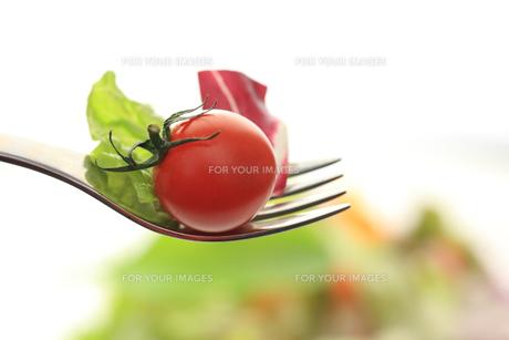 サラダを食べるの素材 [FYI00149626]