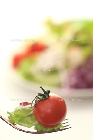 フォークの上のサラダの素材 [FYI00149628]