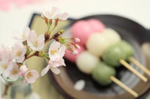 桜と三色団子の写真素材 [FYI00149689]