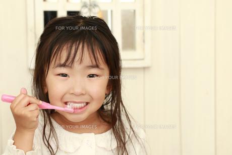 歯磨きする女の子の写真素材 [FYI00149716]