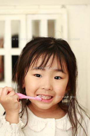 歯磨きする女の子の写真素材 [FYI00149720]