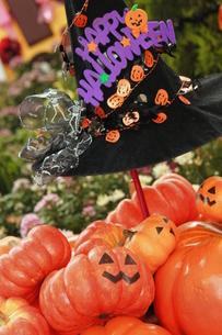 ハロウィンパーティの誘いの写真素材 [FYI00150082]