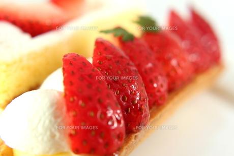 苺のスティックタルトの写真素材 [FYI00150095]