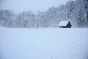雪積もり孤立した小屋の写真素材 [FYI00150210]