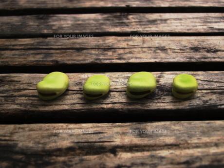 並ぶそらまめの写真素材 [FYI00150631]