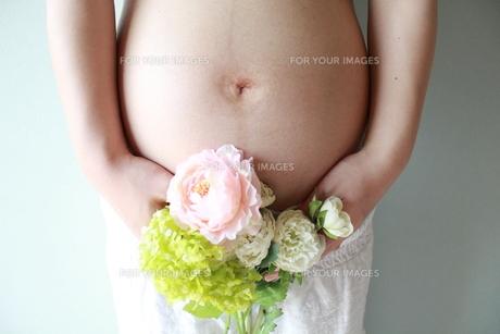 臨月の妊婦さんのおなかと春の花の写真素材 [FYI00150644]