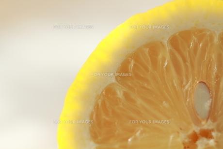レモンの素材 [FYI00151007]