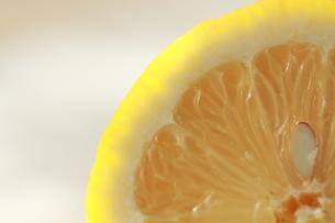 レモンの写真素材 [FYI00151007]