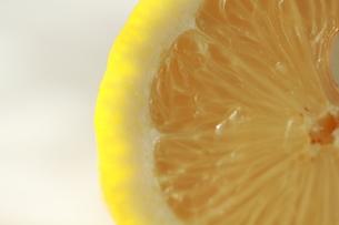 レモンの写真素材 [FYI00151015]