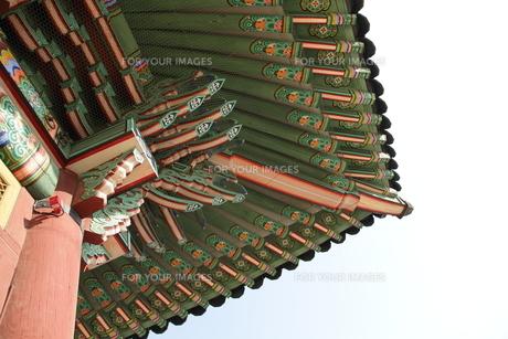 韓国 王宮 屋根の写真素材 [FYI00151162]