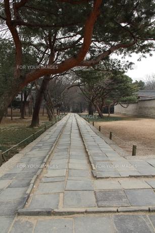 韓国 宋廟 三道の写真素材 [FYI00151179]