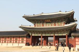 韓国 景福宮 興礼門の写真素材 [FYI00151191]