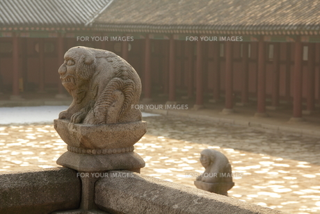 韓国 景福宮 ソチの写真素材 [FYI00151200]