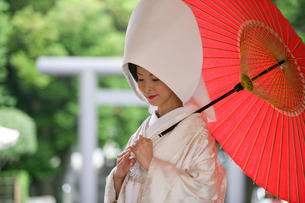 白無垢の女性の写真素材 [FYI00152077]