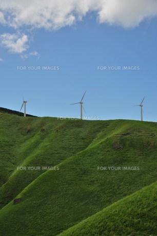 風力発電の写真素材 [FYI00152299]